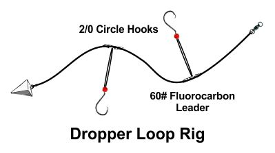 Dropper Loop Rig